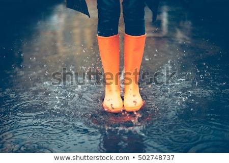 rain boots Stock photo © adrenalina