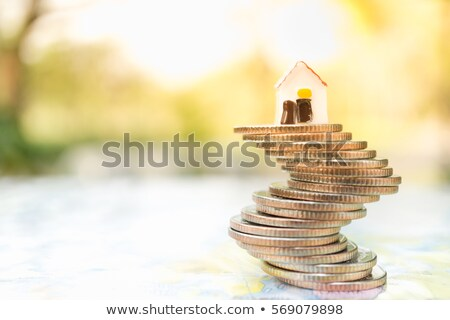 Small model house and coins Stock photo © monkey_business