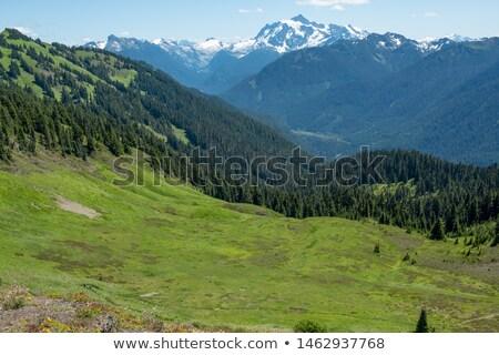 Excelsior Peak Summit Panorama Stock photo © pancaketom