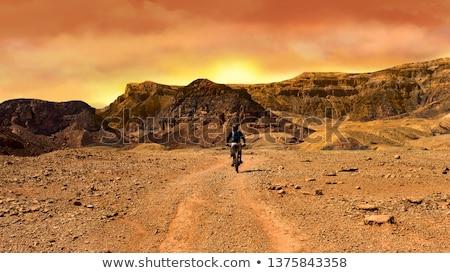 gorge in the Negev desert  Stock photo © OleksandrO