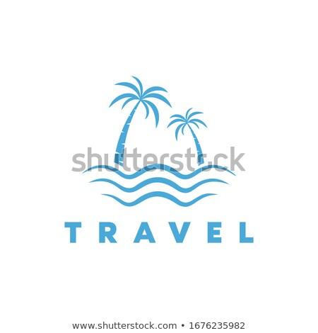 Isla vector montana agua icono naturales Foto stock © blaskorizov