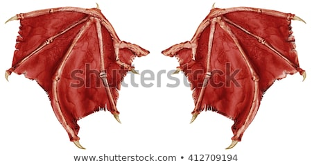 Red dragon wings Stock photo © blackmoon979