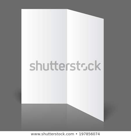 stationary positioned two fold paper brochure stock photo © cherezoff