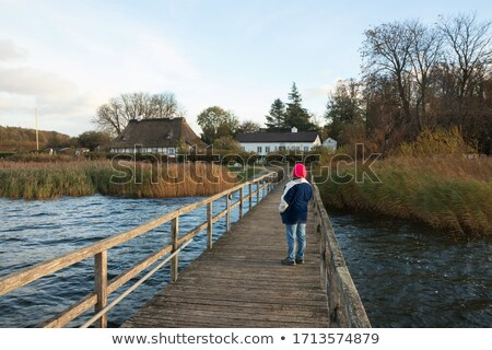 mature woman walking in reeds Stock photo © IS2