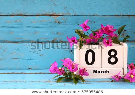 Púrpura hermosa feliz día de la mujer mujeres fondo Foto stock © SArts