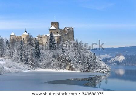 Castillo acantilado ilustración cielo forestales Foto stock © colematt