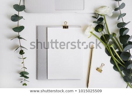 çiçekler · sınır · gül · beyaz · üst · görmek - stok fotoğraf © neirfy