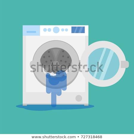 master repair washing machine Stock photo © rogistok