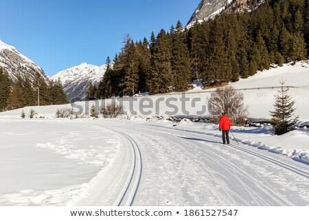 País trilha alpino montanha vale Áustria Foto stock © lichtmeister