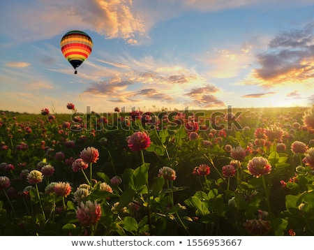 идиллический весны декораций Солнечный южный Германия Сток-фото © prill