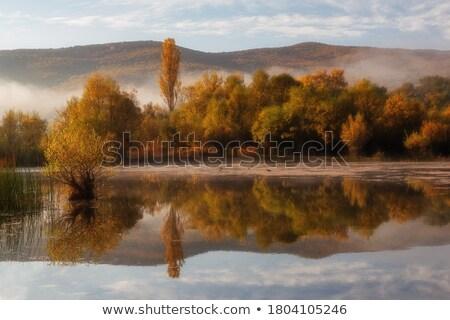 Autumn Skies on a Wilderness Lake Stock photo © wildnerdpix