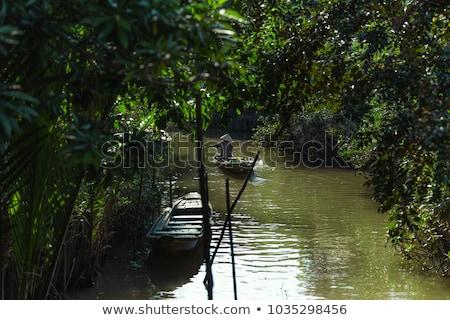 eski · nehir · doğa · tatil · görmek - stok fotoğraf © lianem