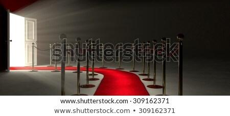 leads   golden key stock photo © tashatuvango