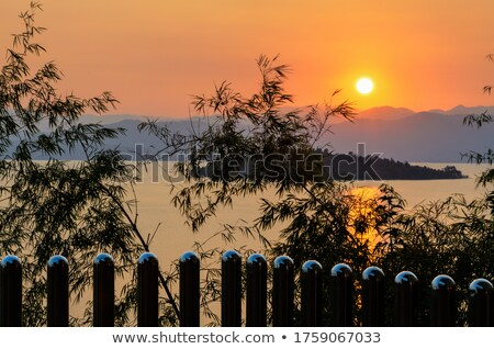High angle view beautiful lake at sunset from resort Stock photo © Yongkiet