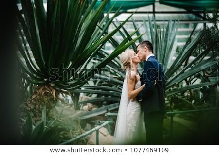 fiatal · esküvő · pár · csók · ablak · élvezi - stock fotó © lightpoet