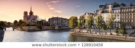 panorama · Paryż · wieża · widoku · noc · Wieża · Eiffla - zdjęcia stock © harlekino