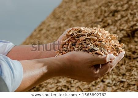 Zdjęcia stock: Drewna · chipy · ogrzewania · alternatywa
