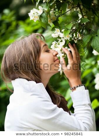 Gyönyörű fiatal nő fehér jázmin virágok nő Stock fotó © lightpoet
