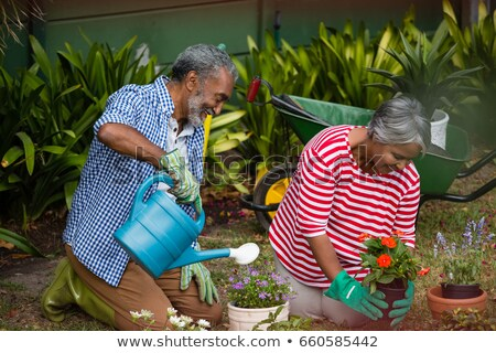 Smiling senior couple holding plants while kneeling together stock photo © wavebreak_media