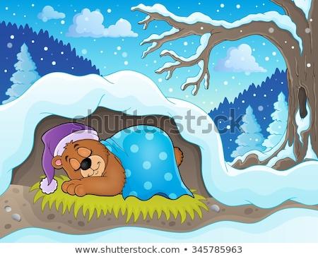 Kettő medvék barlang illusztráció természet háttér Stock fotó © bluering