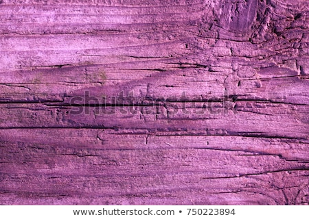 Stock photo: Ultra Violet Wooden background, Texture of Purple color paint plank wall for background