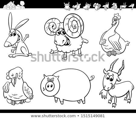 Funny baran zwierząt cartoon ilustracja Zdjęcia stock © izakowski