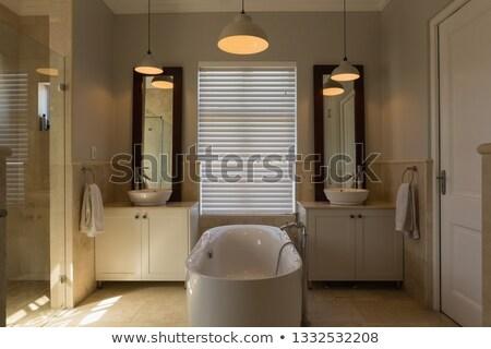 Front widoku nowoczesne wanna łazienka Zdjęcia stock © wavebreak_media