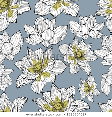floral blue lotus hand drawn pattern  Stock photo © Margolana