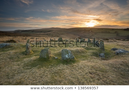 The Nine Maidens Stone Circle on Dartmoor Stock photo © flotsom