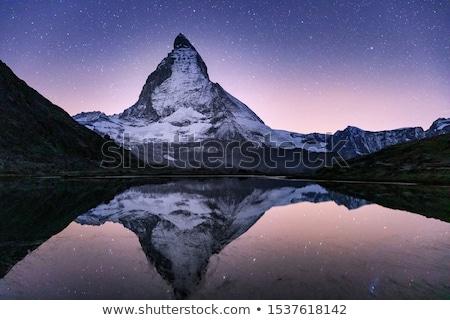 Pic alpes Suisse arbre herbe neige Photo stock © janhetman