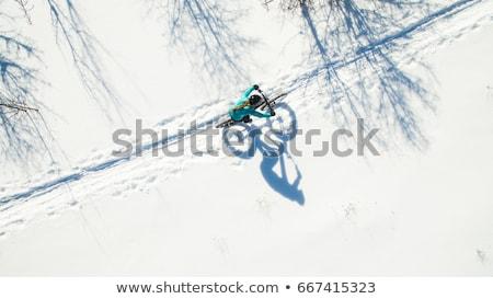 bicicleta · neve · inverno · cena · noturna · bicicleta · esportes - foto stock © hofmeester