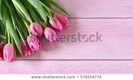Tulpen oud hout mooie kleurrijk rustiek houten Stockfoto © justinb