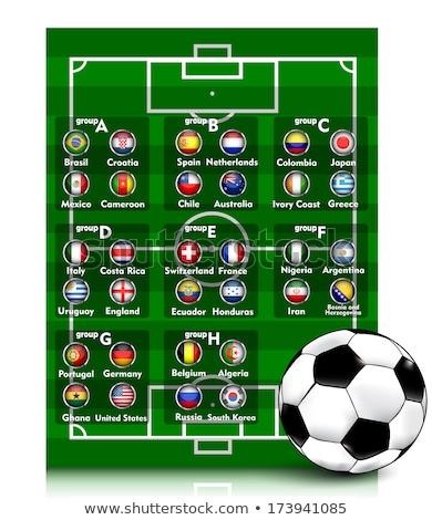 voetbal · kampioenschap · team · spelers · uniform · voetbal - stockfoto © cienpies