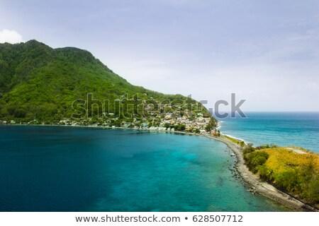 coastline with jungle at the island of Dominica Stock photo © meinzahn