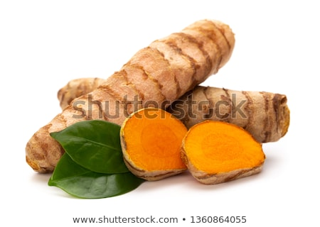 étel főzés föld fűszer gyógynövény hozzávaló Stock fotó © M-studio