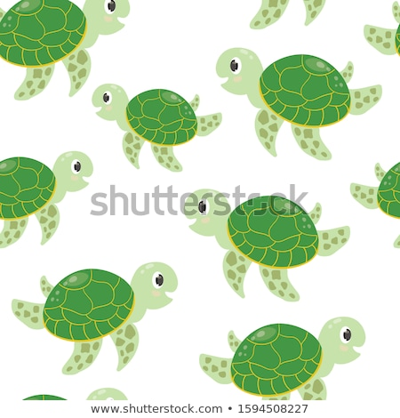 Groene schildpad illustratie papier abstract Stockfoto © colematt