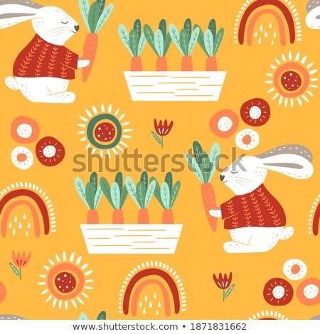 Flower Blooming Plants Carrot Vector Illustration Stock photo © robuart