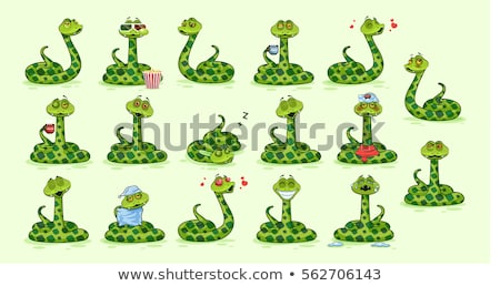 Establecer serpiente carácter ilustración naturaleza diseno Foto stock © bluering