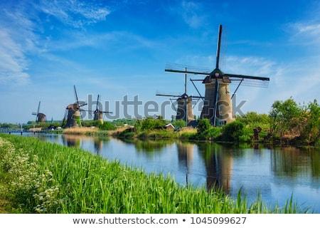 moinho · de · vento · holandês · Holanda · famoso · histórico · água - foto stock © emiddelkoop