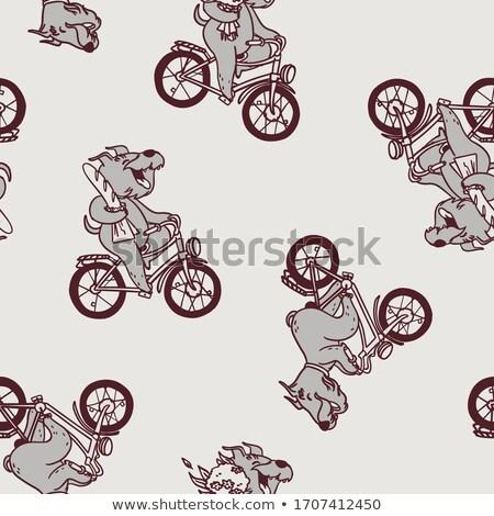 Monocromático desenho animado cão bicicleta Foto stock © vasilixa