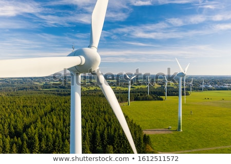 Wind turbines and green fields Stock photo © elxeneize