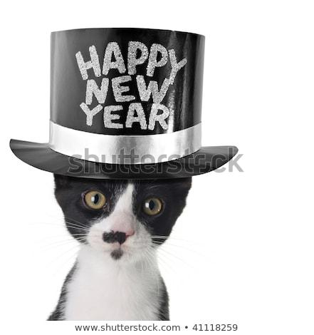 Boldog új évet 2010 lyuk karácsony idő terv Stock fotó © orson