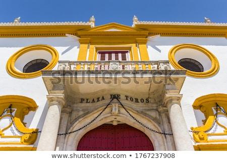 Madrid · Spanyolország · város · gyűrű · bika · panorámakép - stock fotó © hofmeester