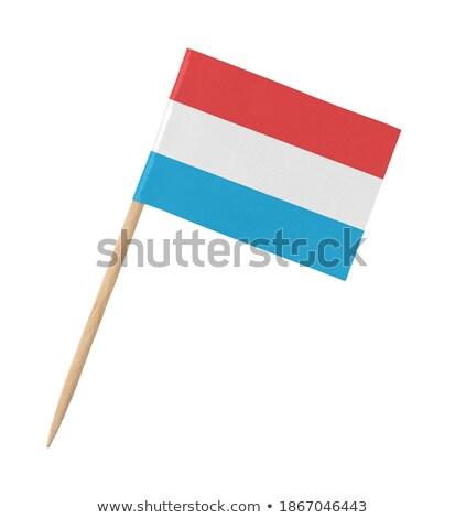 Miniatuur vlag Luxemburg geïsoleerd vergadering Stockfoto © bosphorus