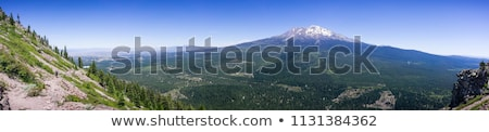 Mount Shasta valley panorama, North California, USA Stock photo © snyfer