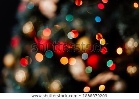 New Year's fairy tale! Stock photo © grechka333