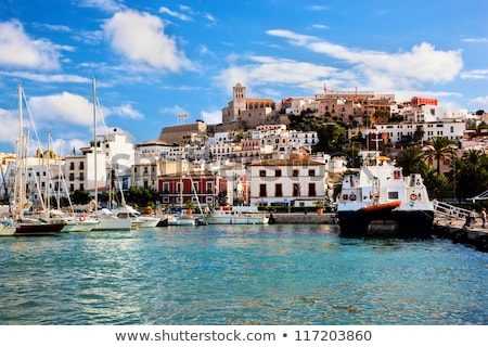 old town and port of ibiza town balearic islands spain stock photo © nito