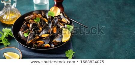 Közelkép természet kék kő kagyló hátterek Stock fotó © gemenacom
