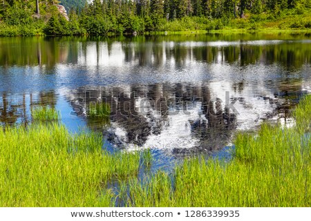 Picture Lake Abstract Mount Shuksan Washington USA Stock photo © billperry