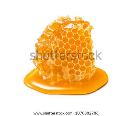 honeycombs with honey stock photo © jordanrusev